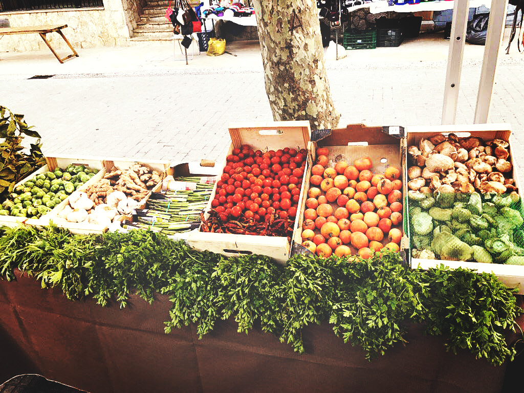 va-de-bio_venta-distribucion-comprar-productos_ecologicos_mallorca_fruta-verdura-eco-mercado-alaro_5