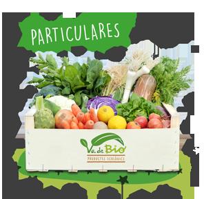 va-de-bio_venta-productos_ecologicos_mallorca_fruta-verdura-granel_fondo-caja-1c