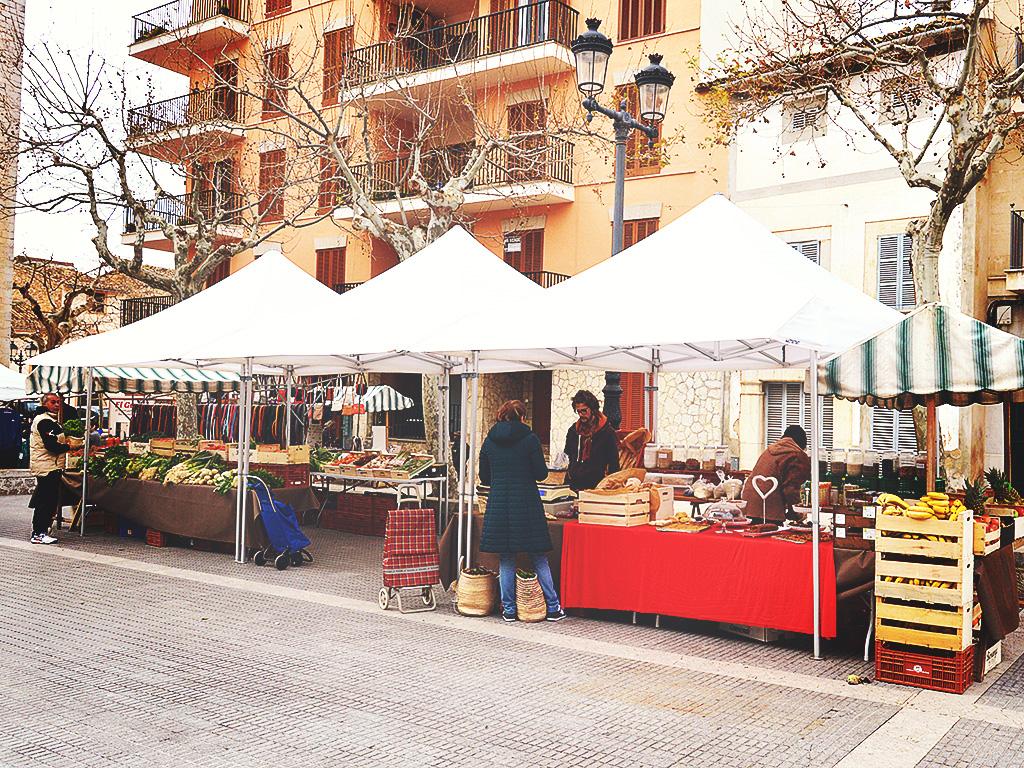 va-de-bio_venta-distribucion-comprar-productos_ecologicos_mallorca_fruta-verdura-eco-mercado-alaro_6